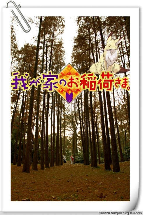 Ue_chan's blog